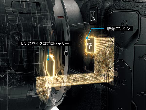 img_products_canon_eosr_umezawa_06.jpg