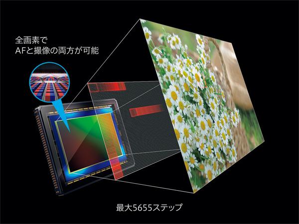 img_products_canon_eosr_umezawa_09.jpg