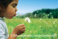 iStockphotoで「売れる」写真とは