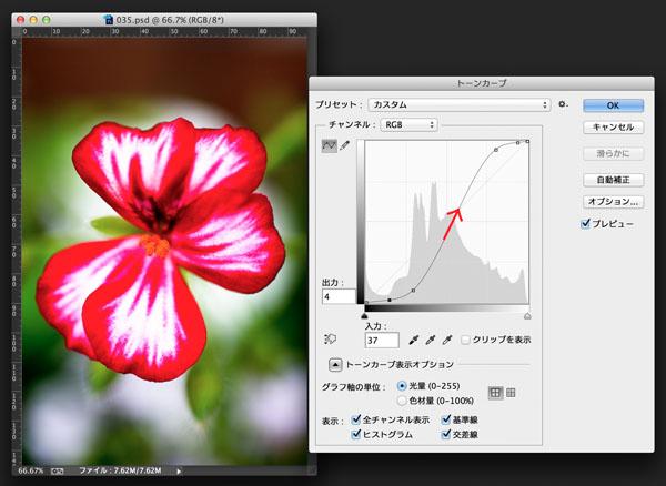 img_soft_color04_33.jpg