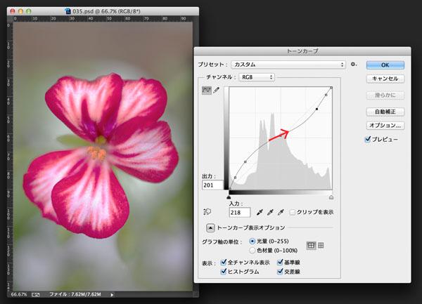 img_soft_color04_34.jpg