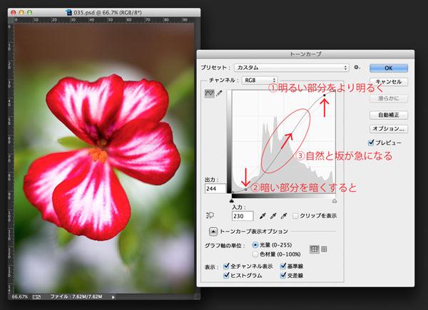 img_soft_color04_35.jpg