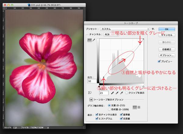 img_soft_color04_36.jpg