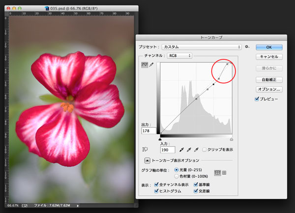 img_soft_color04_37.jpg