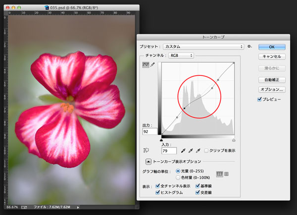 img_soft_color04_38.jpg