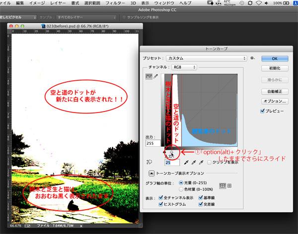 img_soft_color05_29.jpg