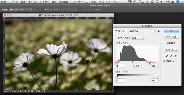 img_soft_color05_42.jpg