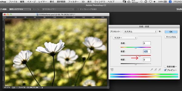img_soft_color05_44.jpg