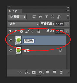 img_soft_color09_05.jpg