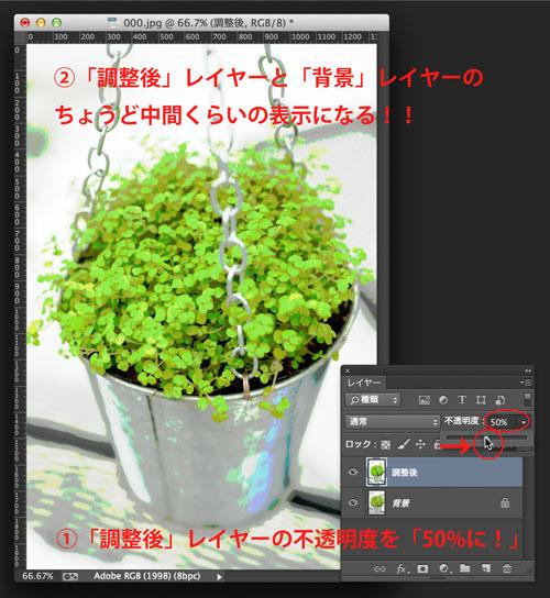 img_soft_color09_13.jpg