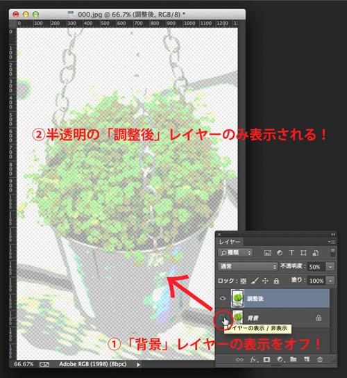 img_soft_color09_15.jpg