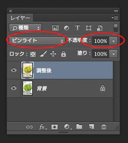 img_soft_color09_31.jpg