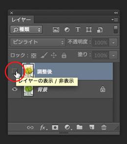 img_soft_color09_33.jpg