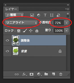 img_soft_color09_41.jpg