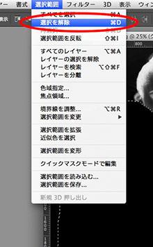 img_soft_color14_22.jpg