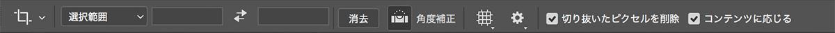 img_soft_cpplus201706_03.jpg