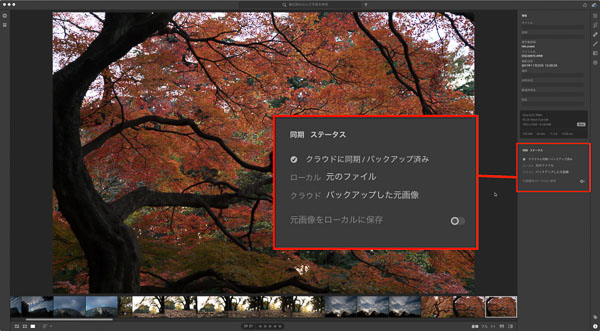 img_soft_lightroom41_25.jpg