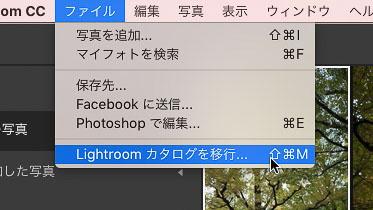 img_soft_lightroom41_27.jpg