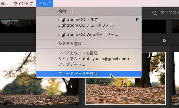 img_soft_lightroom41_51.jpg