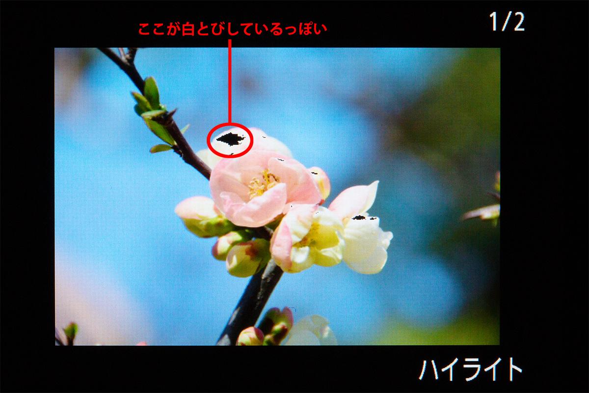 img_soft_lrcc02_01.jpg