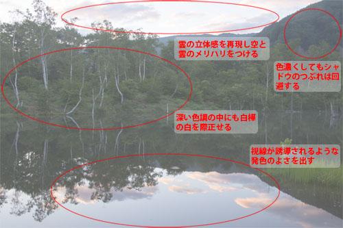 img_soft_nature01_03.jpg