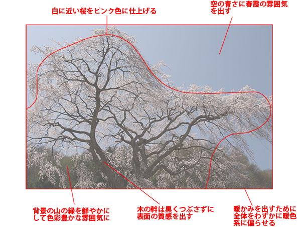img_soft_nature02_03b.jpg