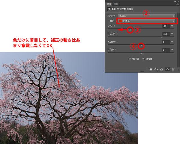 img_soft_nature02_15.jpg