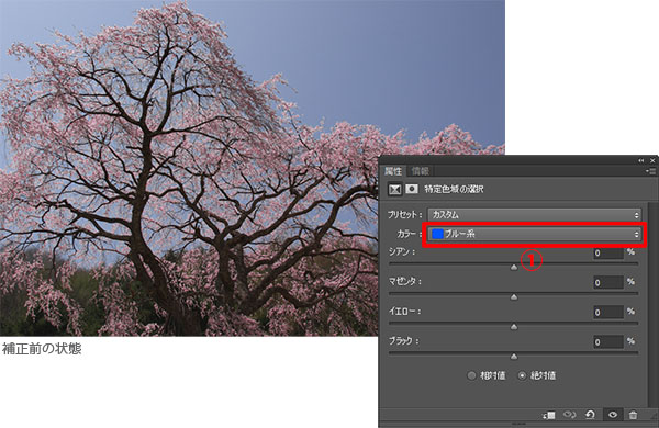 img_soft_nature02_20.jpg