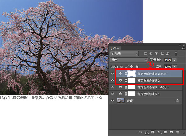 img_soft_nature02_23.jpg