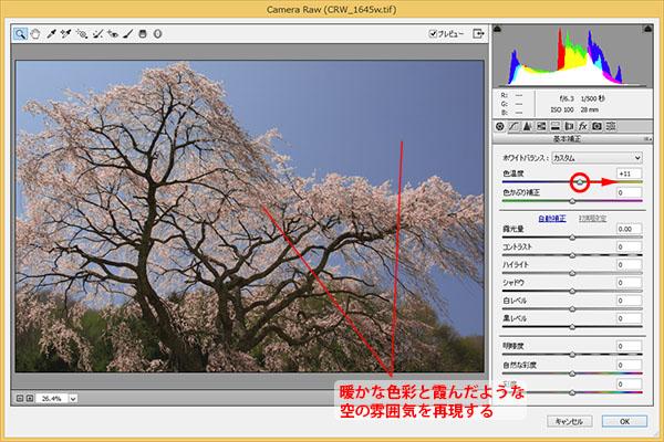 img_soft_nature02_40.jpg