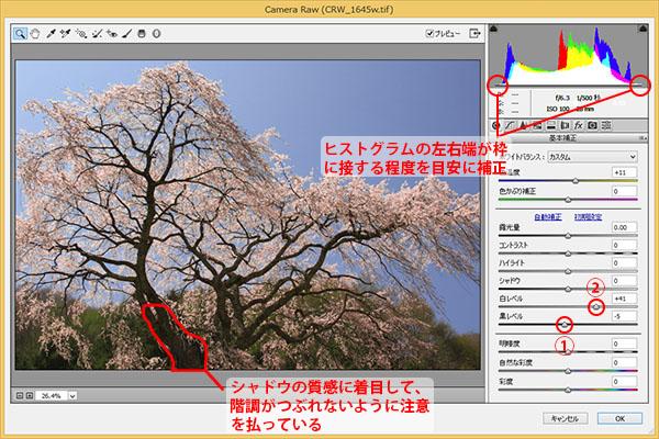 img_soft_nature02_42.jpg