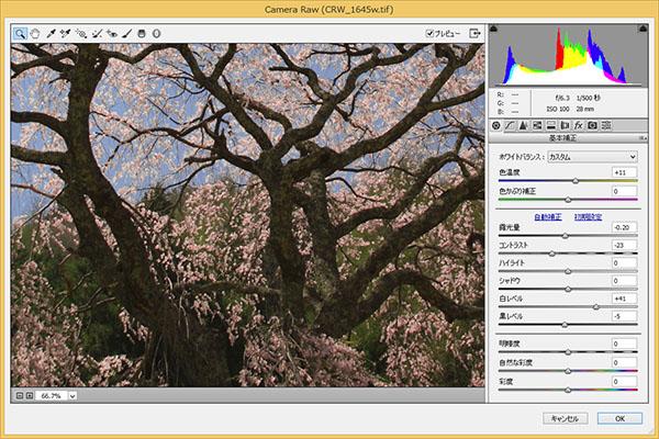 img_soft_nature02_45.jpg