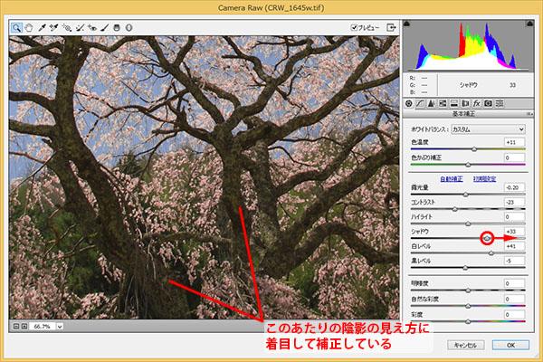 img_soft_nature02_46.jpg