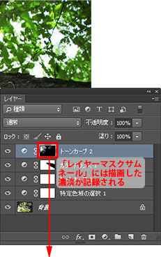 img_soft_nature03_39b.jpg