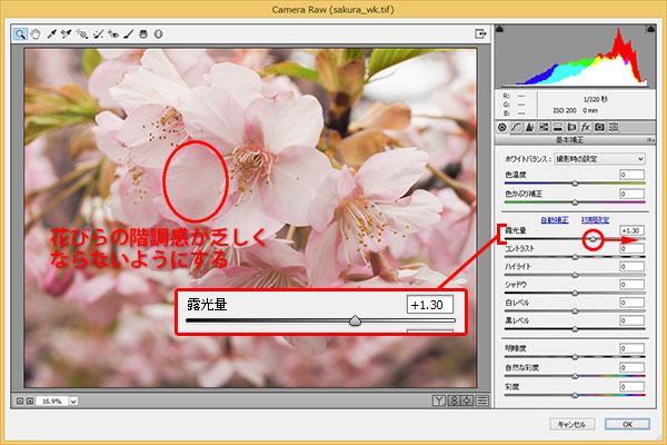 img_soft_nature08_11.jpg