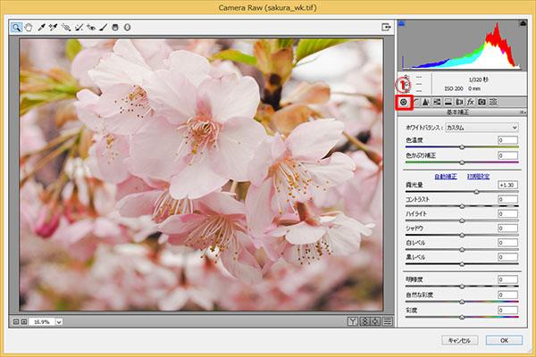 img_soft_nature08_14.jpg