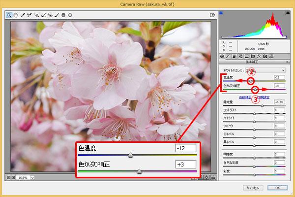 img_soft_nature08_15.jpg