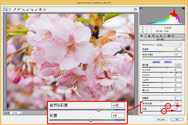 img_soft_nature08_17.jpg