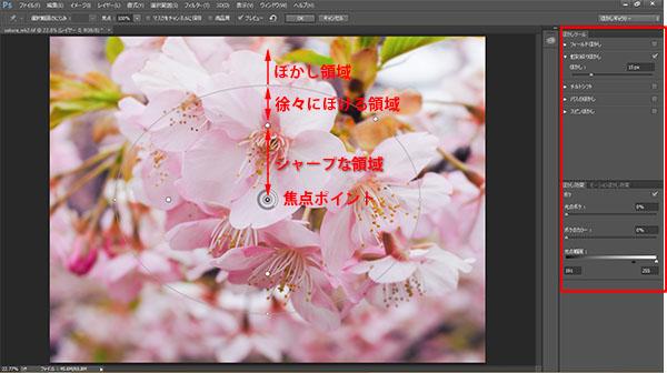 img_soft_nature08_19.jpg