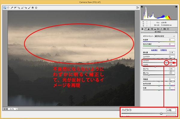 img_soft_nature12_19.jpg