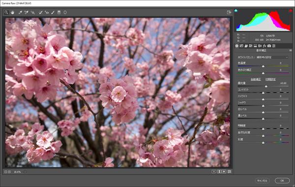 img_soft_nature16_12.jpg