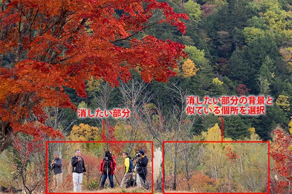 img_soft_nature19_08.jpg