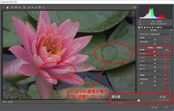 img_soft_nature21_11.jpg