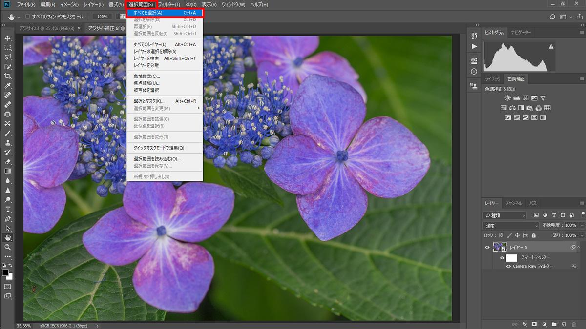 img_soft_nature2_01_07.jpg