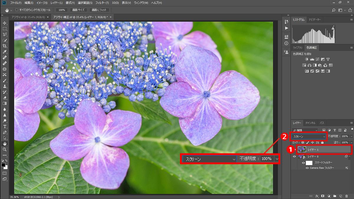 img_soft_nature2_01_09.jpg