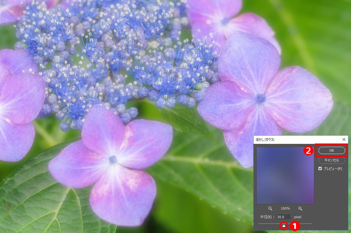 img_soft_nature2_01_13.jpg