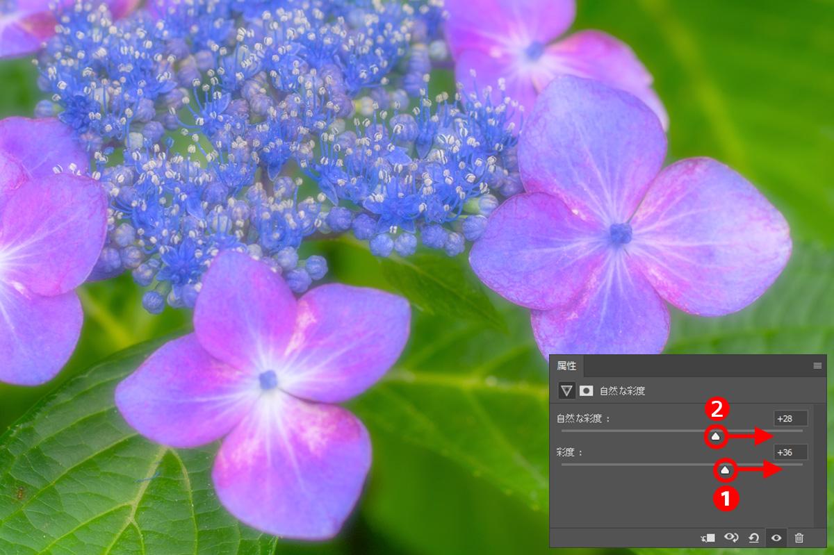 img_soft_nature2_01_17.jpg