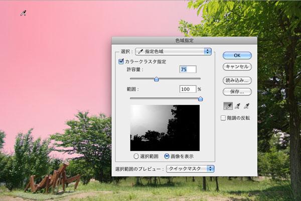 img_soft_pscs5_21_08.jpg