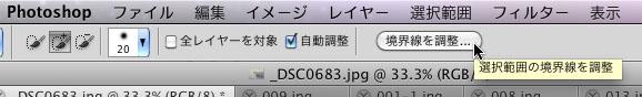 img_soft_pscs5_22_03.jpg