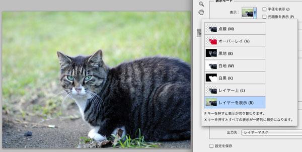 img_soft_pscs5_22_30.jpg